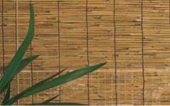 Store roulant bambou