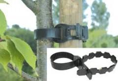 Collier pour arbres